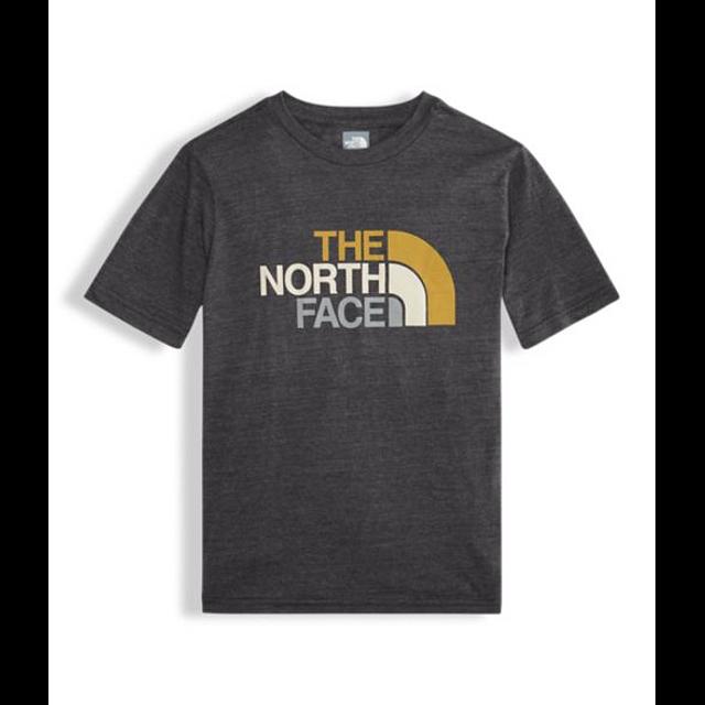 The North Face B S/S Half Dome Triblend TNF Dark Grey Heather